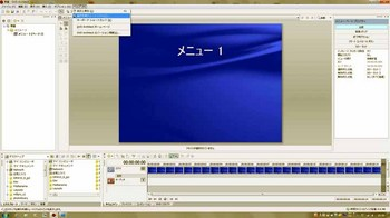 DVD_ss2.jpg